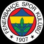 Футбольный клуб Фенербахче