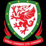 Футбольный клуб Уэльс