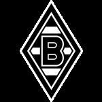 Футбольный клуб Боруссия М