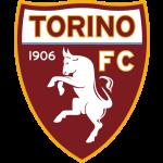 Футбольный клуб Торино